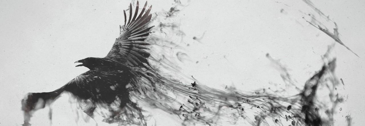 Ravens flying wallpaper - photo#7
